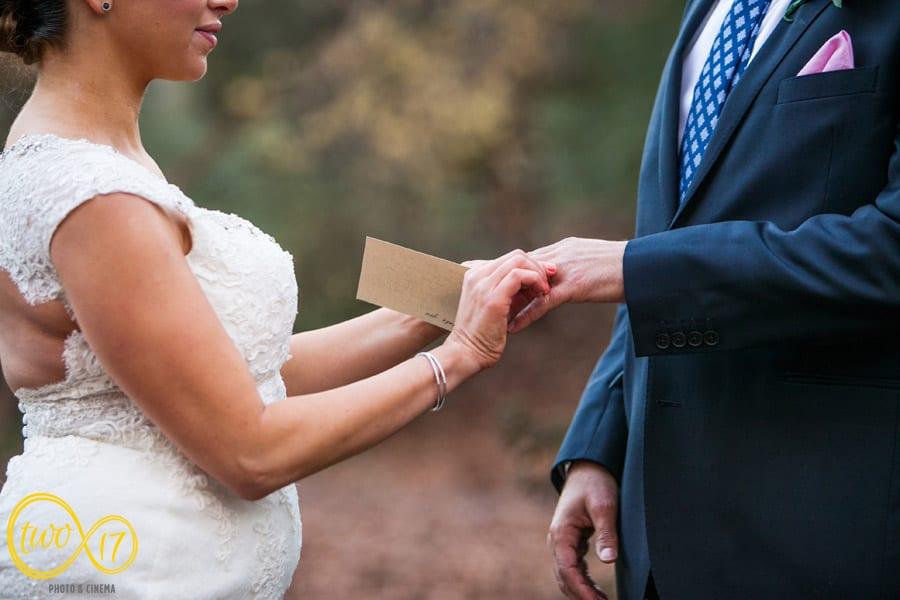 Delaware Wedding Winterthur