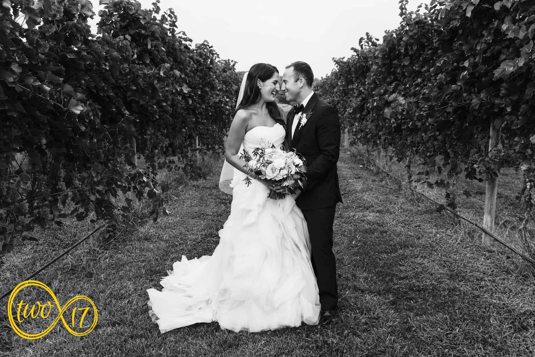 Vineyard Wedding Photos