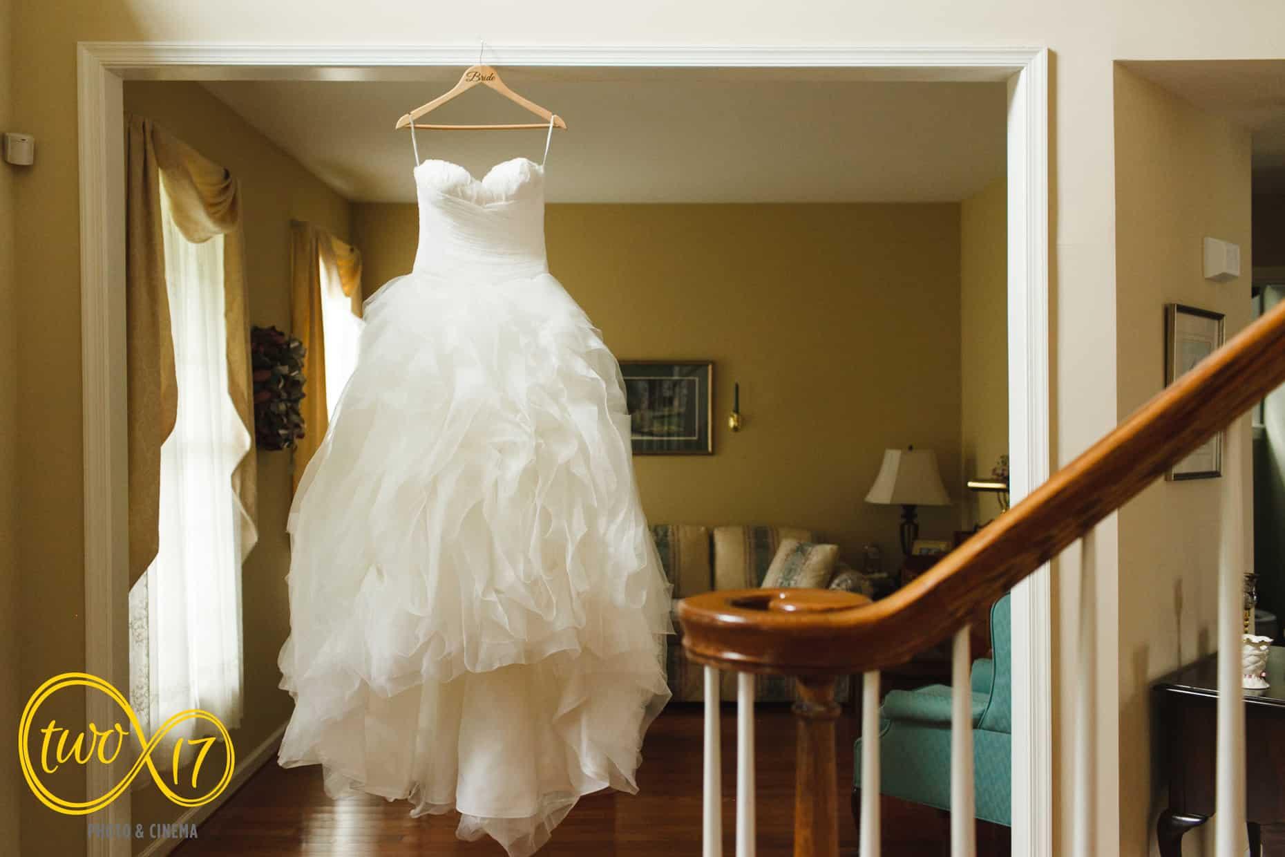 Pronovios Wedding Dress