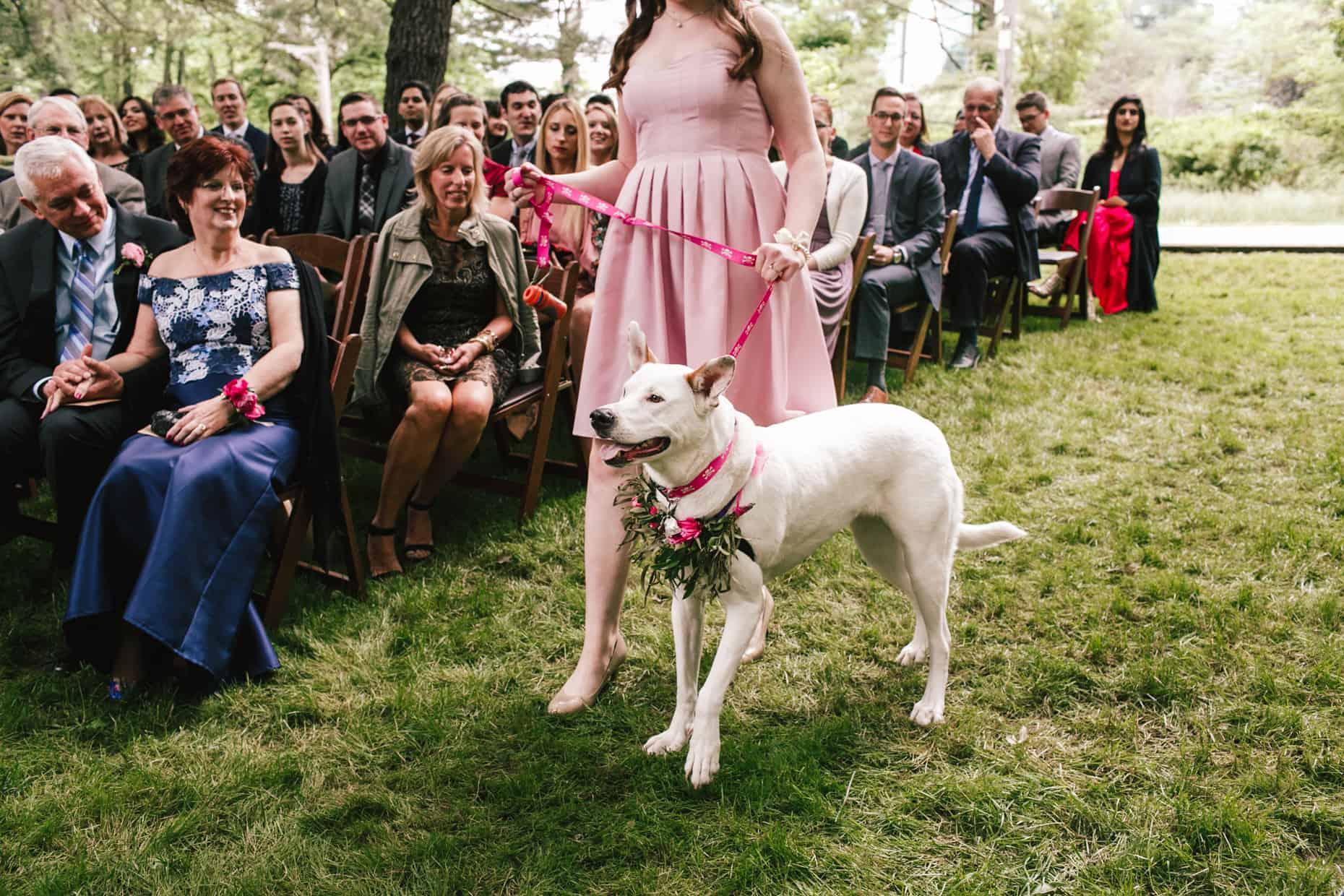 Wedding Photo Radnor