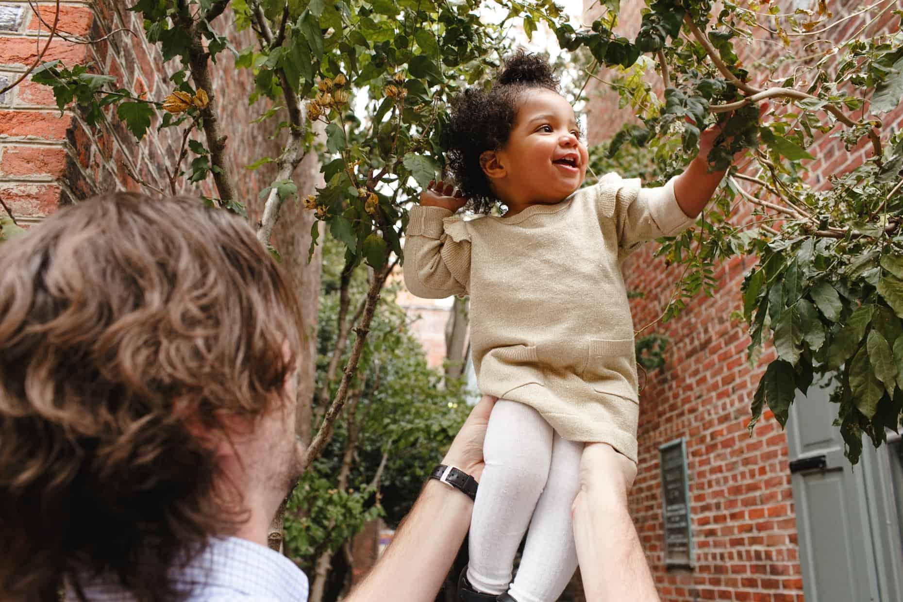 Elphreth's Alley Family Photos