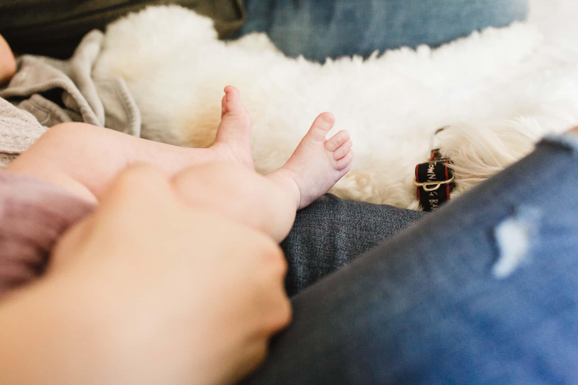 Philadelphia Baby Photograph