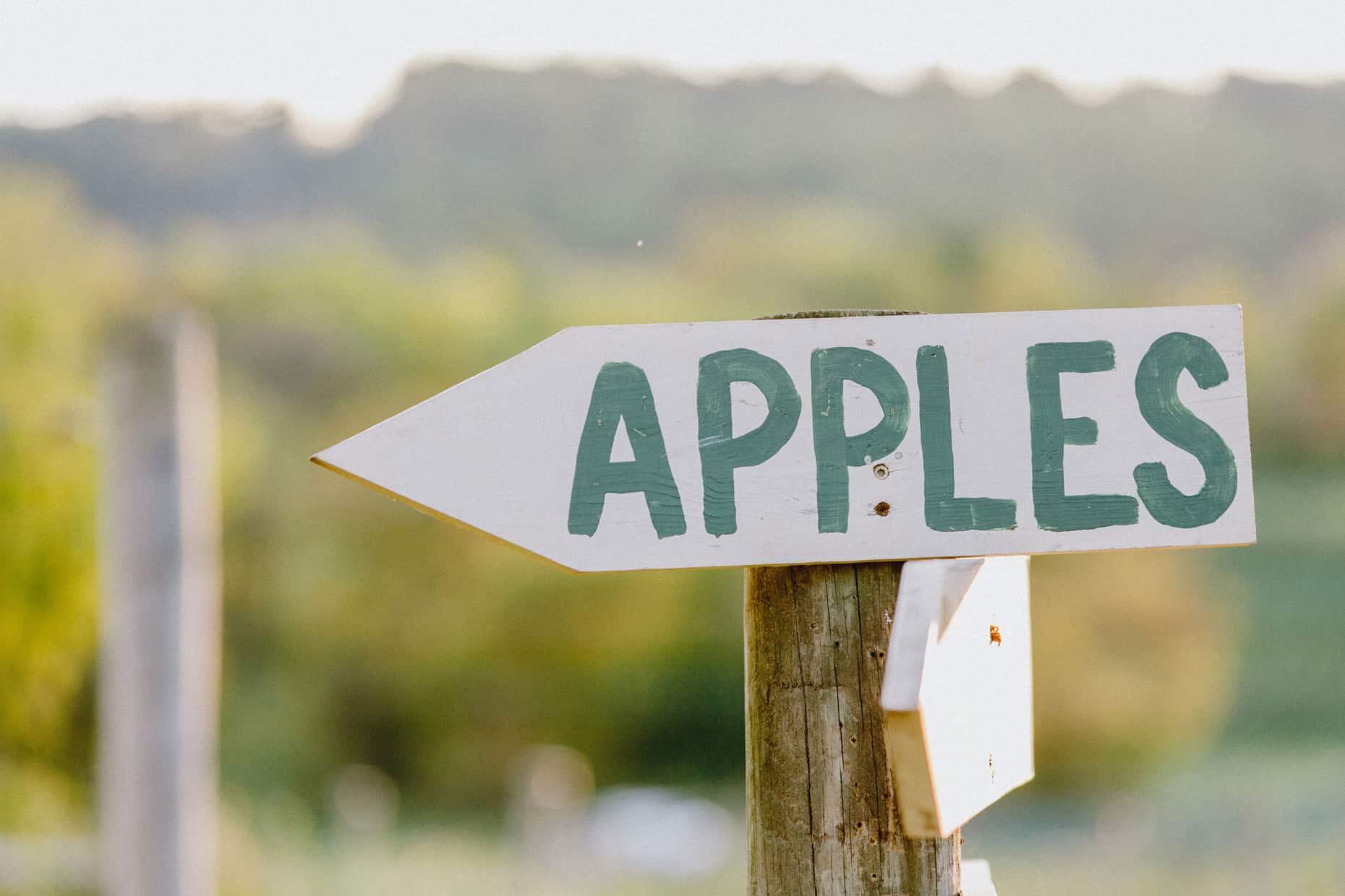 Apple Picking Family Photos
