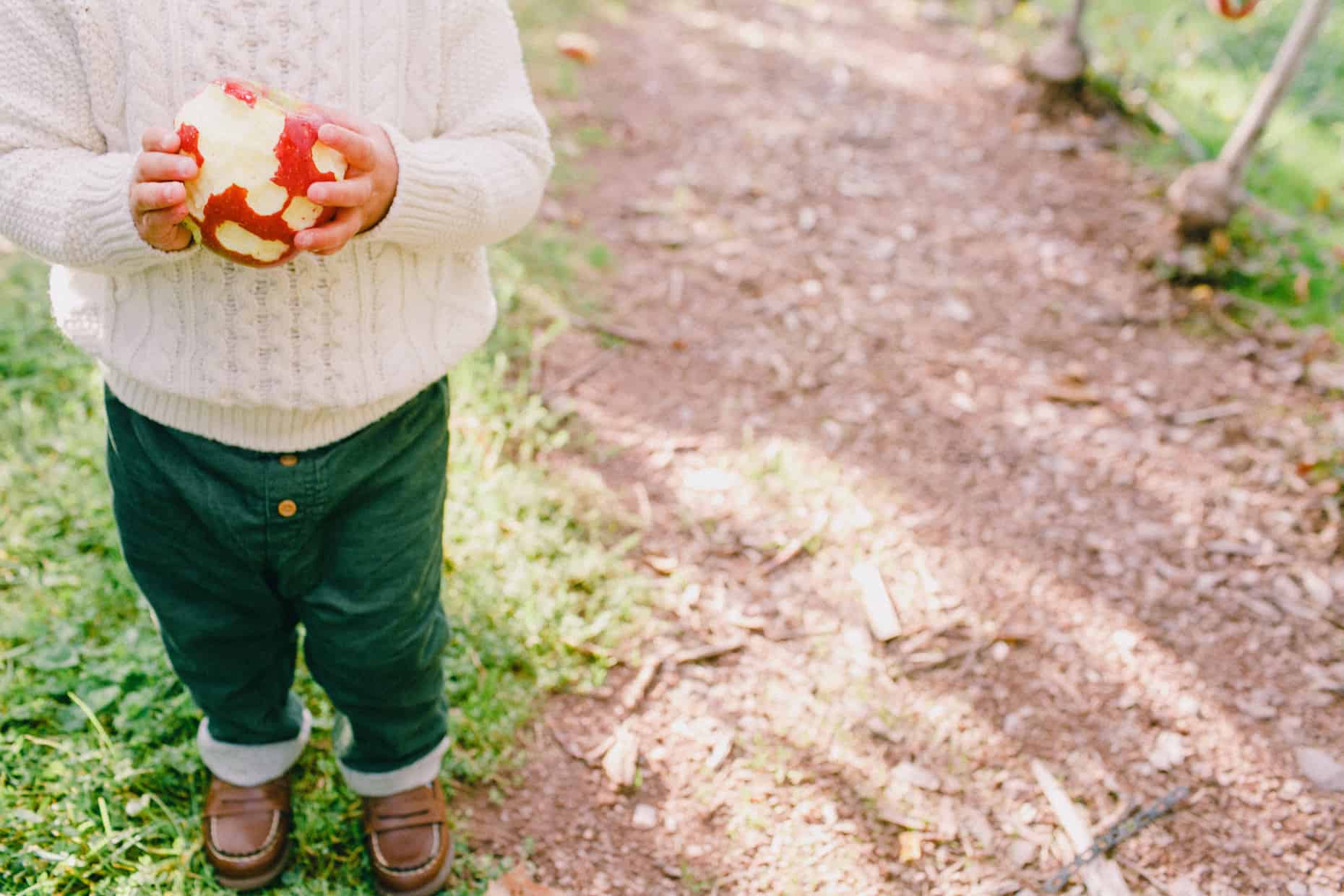 Fall Family Photographer New Jersey